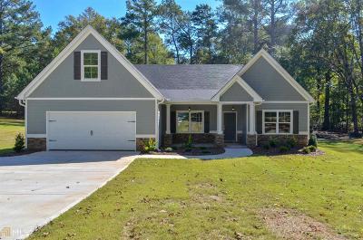 Newnan Single Family Home For Sale: 1188 Smokey Rd #2