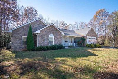 Hiawassee Single Family Home For Sale: 402 Admirals Pt