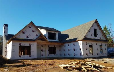 Newnan Single Family Home For Sale: 775 Vaughn Rd #Lot 2