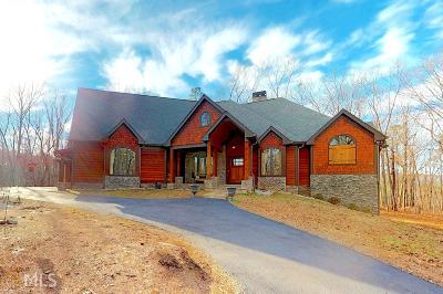 Canton Single Family Home For Sale: 2021 Pleasant Union Rd