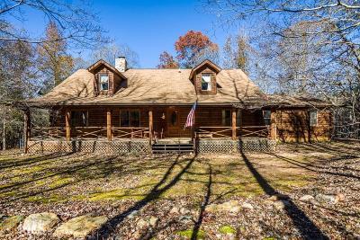 Newnan Single Family Home For Sale: 1357 Bud Davis Rd