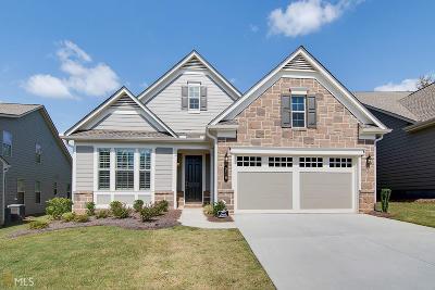 Peachtree City Single Family Home New: 210 Spruce Pine Cir