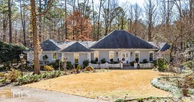 Sandy Springs Single Family Home New: 30 Serendipity Way