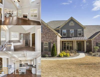 Cobb County Single Family Home New: 1289 Chipmunk Forest Chase