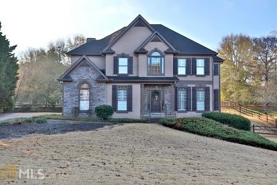 Woodstock Single Family Home For Sale: 1058 Avery Creek Dr