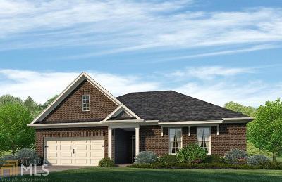 Villa Rica Single Family Home New: 3034 Bedrock Dr