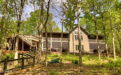 Ellijay Single Family Home For Sale: 422 E Goldmine
