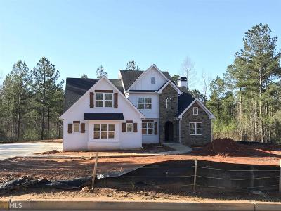 Newnan Single Family Home For Sale: Water Stone Dr #15K