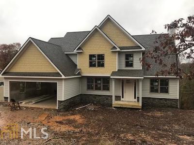 Dawsonville Single Family Home For Sale: 224 Old White Oak Trl