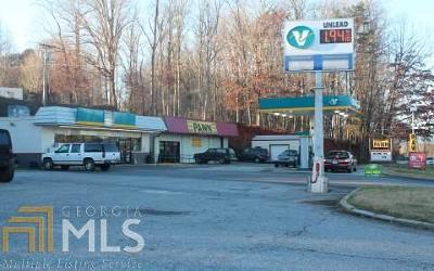 Hiawassee Commercial For Sale: 822 Main St N #&830