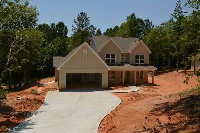 Lagrange Single Family Home For Sale: 415 Jasmine Cir