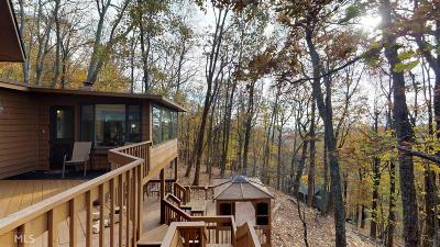 Jasper Single Family Home For Sale: 501 Valley Vw