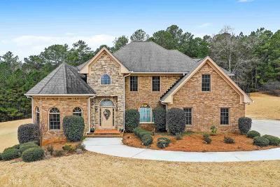 McDonough Single Family Home For Sale: 1008 Genesis Pkwy