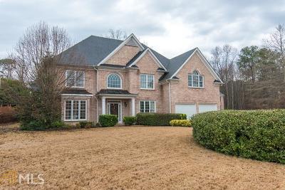 Snellville Single Family Home For Sale: 1845 Brandie Elaine Ave