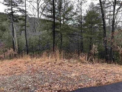 Blairsville Residential Lots & Land New: The Hills Queen Gap #119