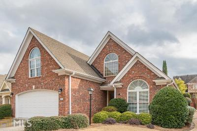 Snellville Single Family Home New: 2070 Woodberry Run Dr