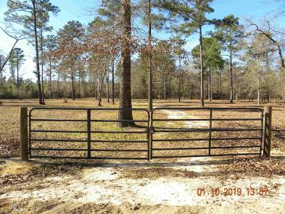 Statesboro Residential Lots & Land For Sale: Brannen Hodges Rd