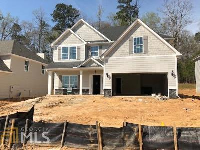 Newnan Single Family Home New: 31 South York #231