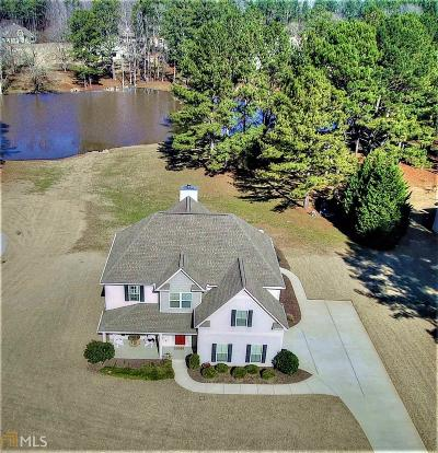 Newnan Single Family Home New: 223 Austin Storey Cir