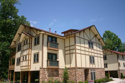 White County Condo/Townhouse New: 976 Edelweiss Strasse #2-101 L