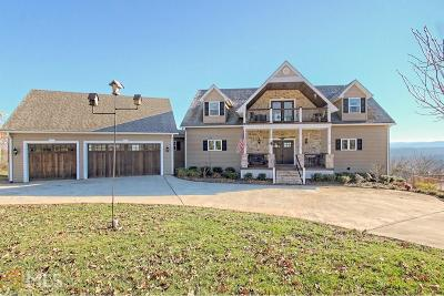 Blairsville Single Family Home For Sale: 104 Skye Dr