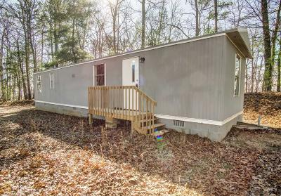 Ellijay Single Family Home For Sale: 1505 Morton Dr