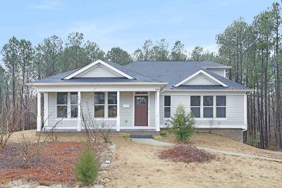 Loganville Single Family Home New: 1058 Silver Thorne Dr
