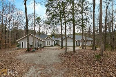 Newnan Single Family Home New: 334 Ancient Oak Ln