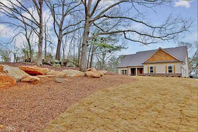 Newnan Single Family Home New: Handy Rd