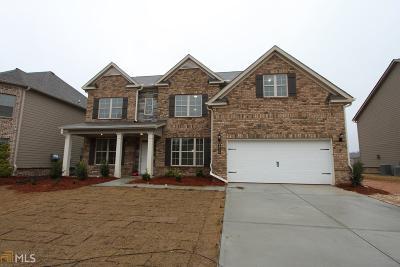 Loganville Single Family Home New: 3618 Brightfield Lane #80