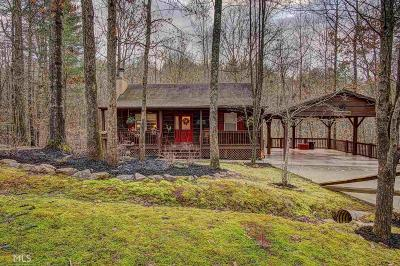 Blairsville Single Family Home New: 593 Lance Crossing Rd