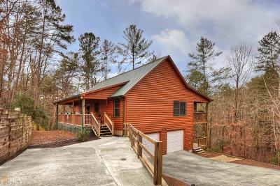 Ellijay Single Family Home For Sale: 130 Tonto Dr