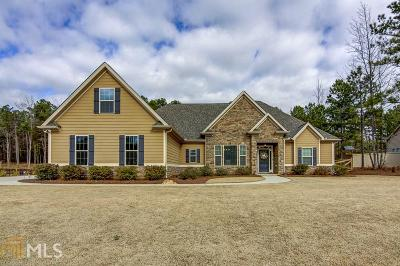 Newnan Single Family Home For Sale: 171 Clearview Estates Dr