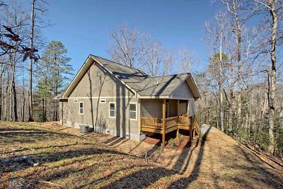 Hiawassee Single Family Home For Sale: 4838 Hf Lyons Rd