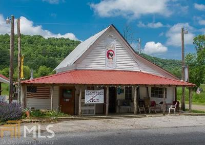 Union County Commercial For Sale: 12 Grizzle Creek Rd