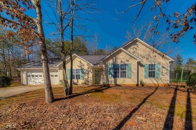 Ellijay Single Family Home Under Contract: 46 Orman Dr #6