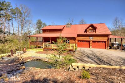 Blue Ridge Single Family Home For Sale: 42 Overlook Rd