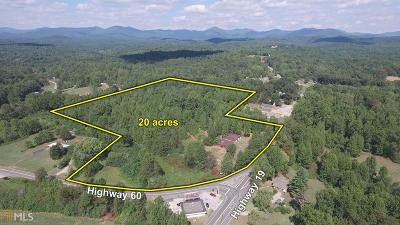 Lumpkin County Commercial For Sale: 4237 Highway 19