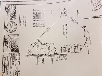 Monticello Residential Lots & Land For Sale: Highway 83 S #38.54 Ac