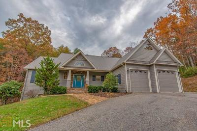 Blairsville Single Family Home For Sale: 141 Brooke Ct
