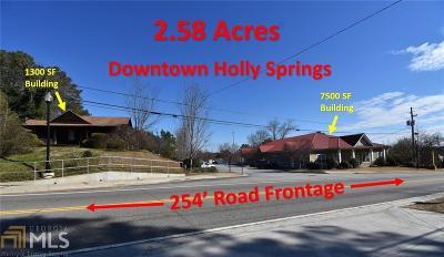 Canton, Woodstock, Cartersville, Alpharetta Commercial For Sale: 2547 Holly Springs Pkwy