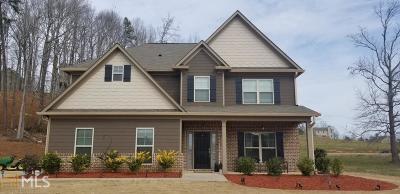 Dawsonville Single Family Home For Sale: 91 Blue Sky Dr