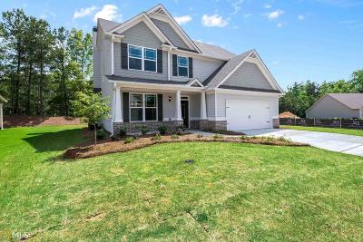 Villa Rica Single Family Home New: 149 Greatwood Ln #102