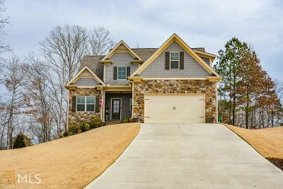 Cartersville Single Family Home For Sale: 16 Coppage Ln #95