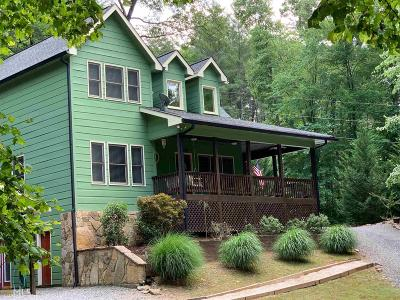 Ellijay Single Family Home For Sale: 31 Nahunta Ct