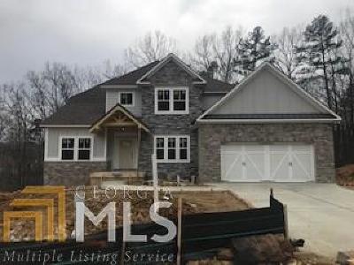 Paulding County Single Family Home For Sale: 77 White Spruce Trl