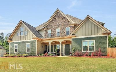 Newnan Single Family Home New: 259 Palomino Dr