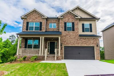 Snellville Single Family Home New: 8171 Hillside Climb Way #25