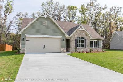 Camden County Single Family Home New: 373 Daniel Trent Way #125