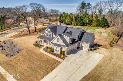 Canton Single Family Home New: 203 Towne Overlook Dr